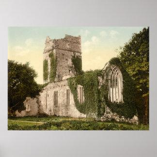 Abadía de Muckross, Killarney, condado Kerry Posters