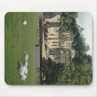 Abadía de Rievaulx, Yorkshire, Reino Unido Tapete De Ratón