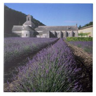Abadía de Senanque, Gordes, Vaucluse, Provence, Azulejo Cuadrado Grande