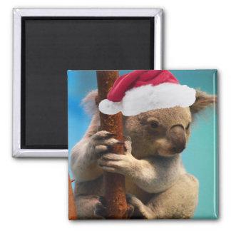 Abajo debajo de koala del navidad imán cuadrado