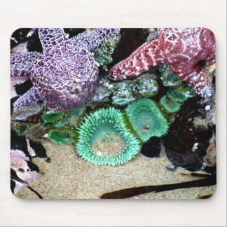 Abajo por el cojín de ratón de mar alfombrillas de raton