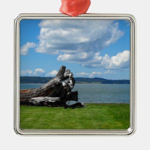 Abajo por el mar ornaments para arbol de navidad