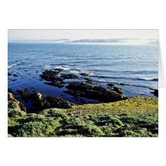 Abalone Fishing At Tomales Point Greeting Card