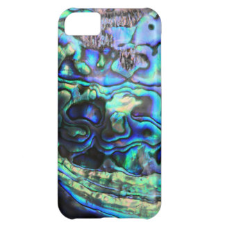 Abalone paua shell cover for iPhone 5C