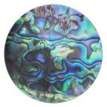 Abalone paua shell plate