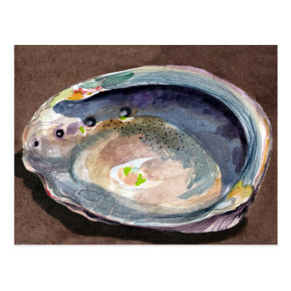 Abalone Shell Post Cards