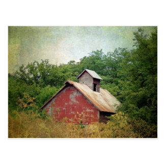 Abandoned and Overgrown Postcard