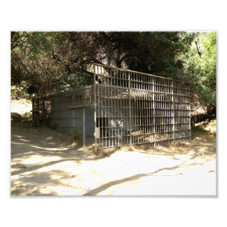 Abandoned Cage At The Old LA Zoo Photo