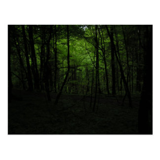 Abandoned dark forest postcard