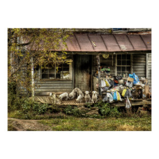 Abandoned Farm House with Dogs - Color Poster