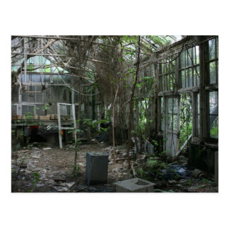 Abandoned greenhouse postcard