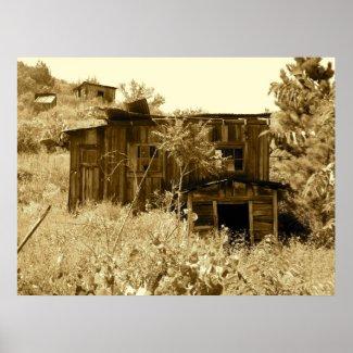Abandoned Homestead in Arizona print