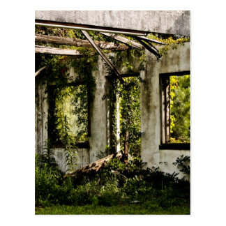 Abandoned motel old Florida Postcard