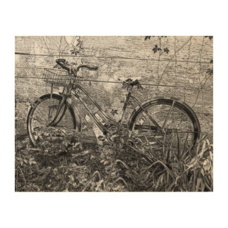 Abandoned Old Bike Wood Canvases