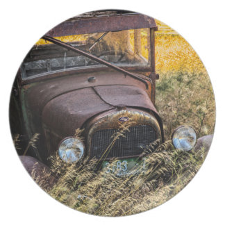 Abandoned old car in tall grass plate