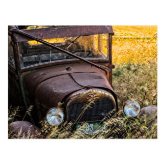 Abandoned old car in tall grass postcard