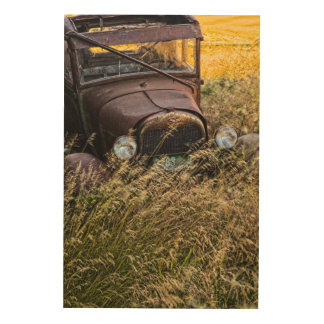 Abandoned old car in tall grass wood canvases