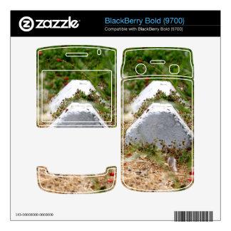 Abandoned Parking Lot BlackBerry Skin