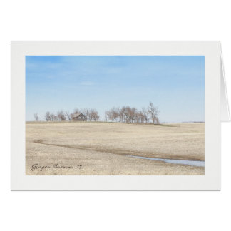 Abandoned Prairie Homestead In North Dakota #1B Card