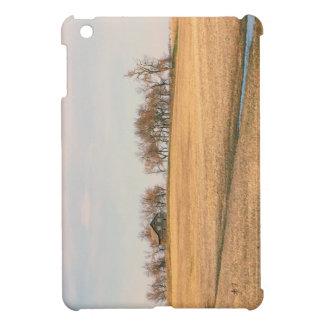 Abandoned Prairie Homestead In North Dakota #3B iPad Mini Cover