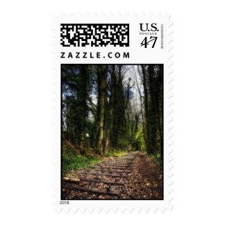 Abandoned Railway Tracks HDR Postage