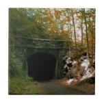 Abandoned RR Tunnel #2 Tile