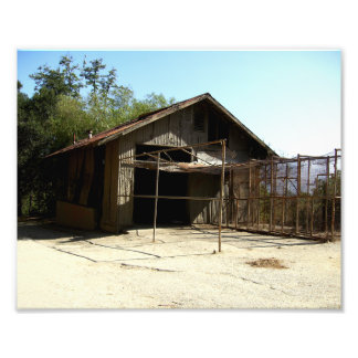 Abandoned Shed At The Old LA Zoo Photograph