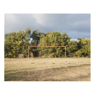 Abandoned Soccer Field Panel Wall Art