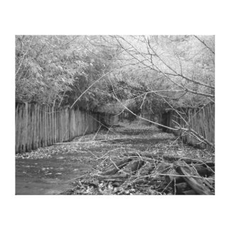 Abandoned Zoo in black and white Canvas Print