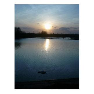Abberton Reservoir Postcard