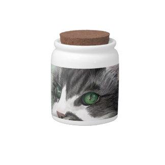 Abbie domestic long hair cat, digital portrait candy jars