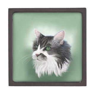 Abbie domestic long hair cat, digital portrait jewelry box