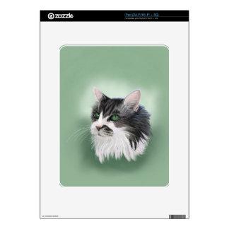 Abbie domestic long hair cat, digital portrait skin for iPad