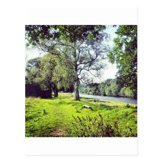 Abbotsford Postcard