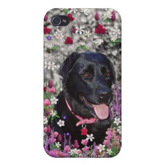 Abby en flores - perro negro del laboratorio iPhone 4 funda