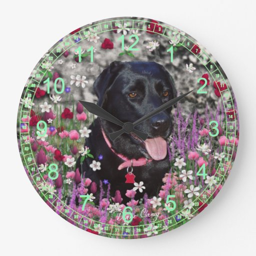 Abby en flores - perro negro del laboratorio reloj redondo grande