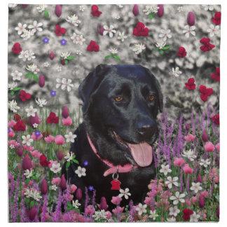 Abby en flores - perro negro del laboratorio servilletas de papel
