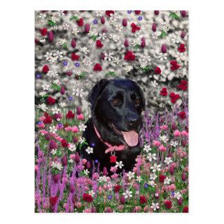 Abby en flores - perro negro del laboratorio postal