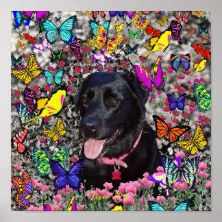 Abby en mariposas - perro negro del laboratorio impresiones