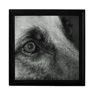 Abby German Shepherd Watchful Eye Jewelry Box