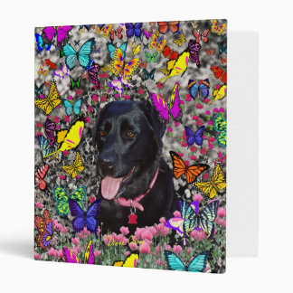 Abby in Butterflies - Black Lab Dog Binder