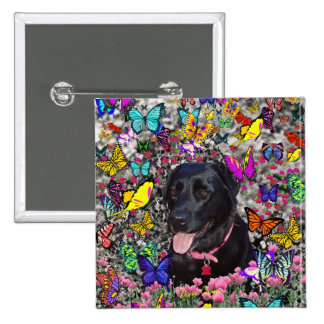 Abby in Butterflies - Black Lab Dog 2 Inch Square Button