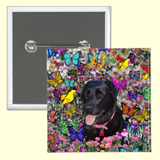 Abby in Butterflies - Black Lab Dog Buttons