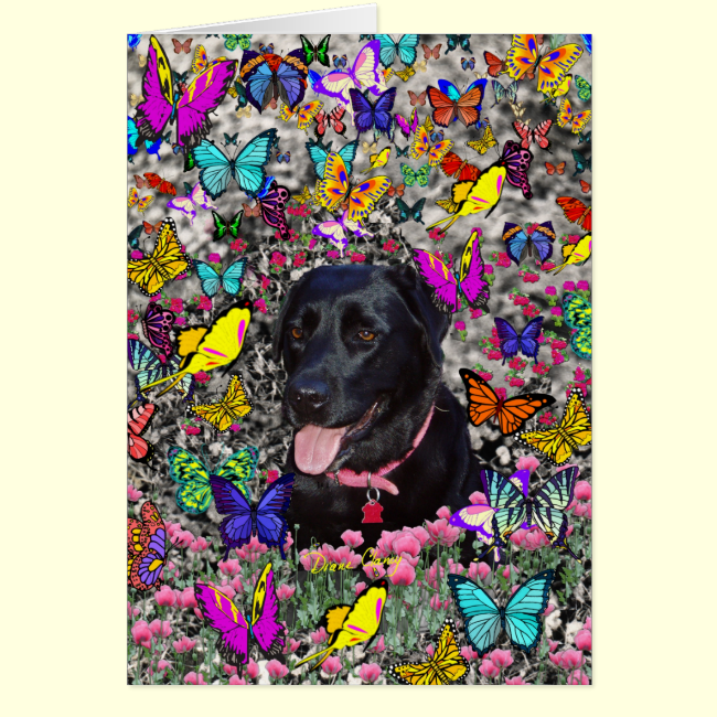 Abby in Butterflies - Black Lab Dog Card