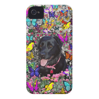 Abby in Butterflies - Black Lab Dog iPhone 4 Cover