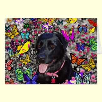 Abby in Butterflies - Black Lab Dog Greeting Cards