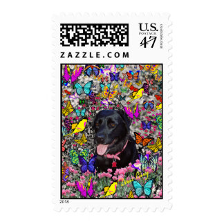 Abby in Butterflies Postage - Black Labrador
