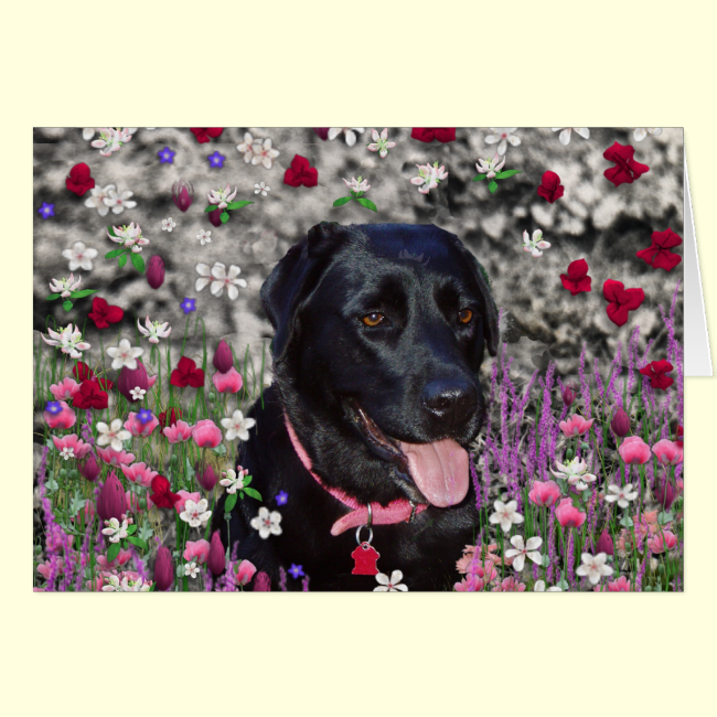 Abby in Flowers – Black Lab Dog Greeting Card