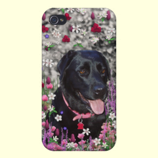 Abby in Flowers – Black Lab Dog iPhone 4 Cases