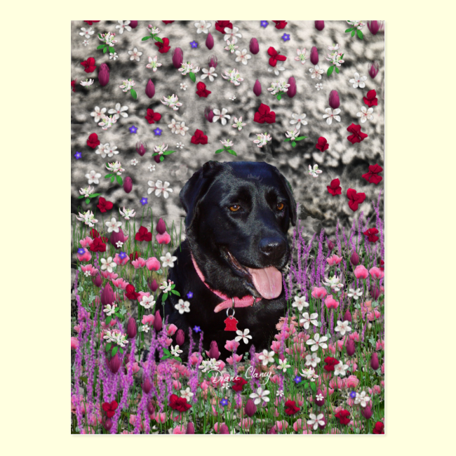 Abby in Flowers – Black Lab Dog Postcards